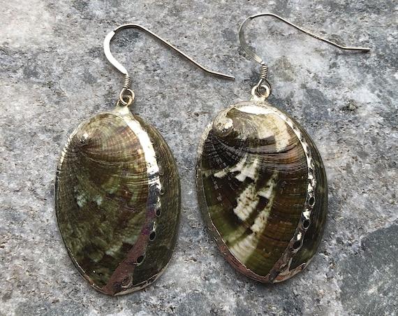 Green Abalone Shell Earrings