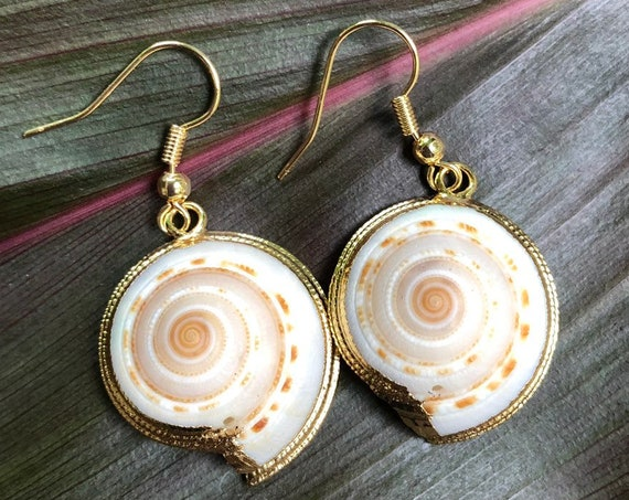 Small Sundial Shell Earrings