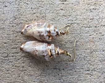 Gold Conch Shell Earrings