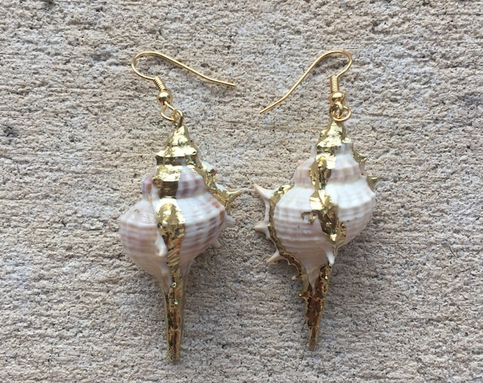 Large Gold Murex Shell Earrings