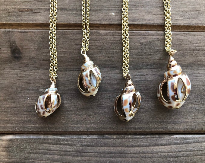 Gold Sliced Sea Shell Necklace