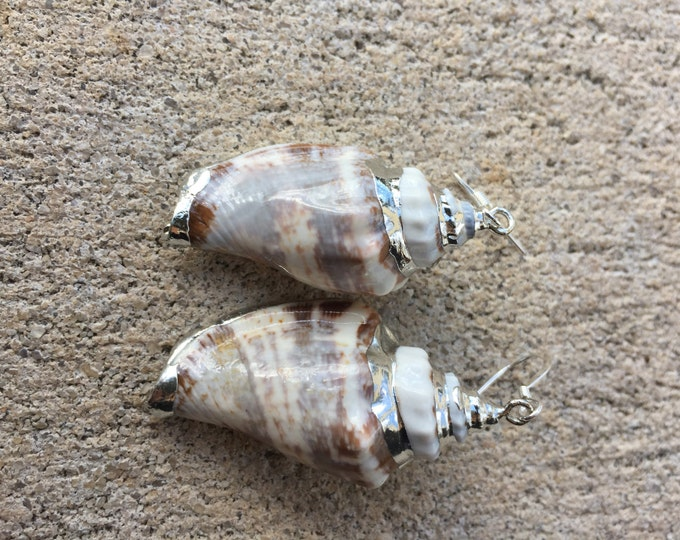 Sterling Silver Conch Shell Earrings