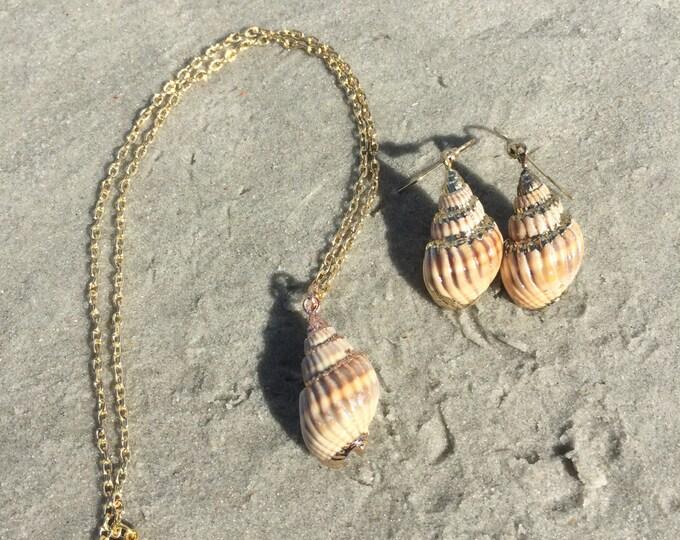 Gold Nassa Shell Jewelry Set