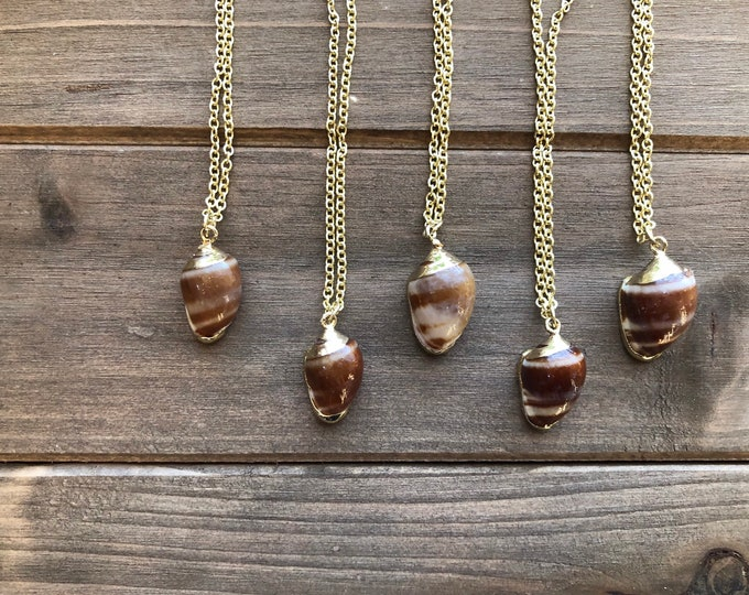 Small Brown Seashell Necklace