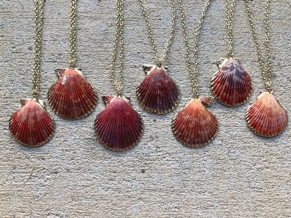 Pink Scallop Shell Necklace