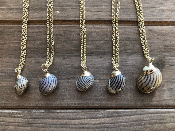 Zebra Shell Necklace