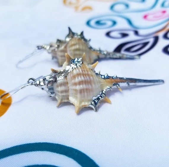 Large Murex Shell Earrings with Sterling Ear Wire