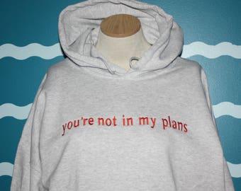 Custom Hooded Sweatshirt - You're Not In My Plains