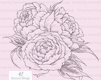Digital Stamp - Instant Download - Peony - digistamp - Peony Bouquet - Beautiful Floral Line Art for Cards & Crafts by Mitzi Sato-Wiuff