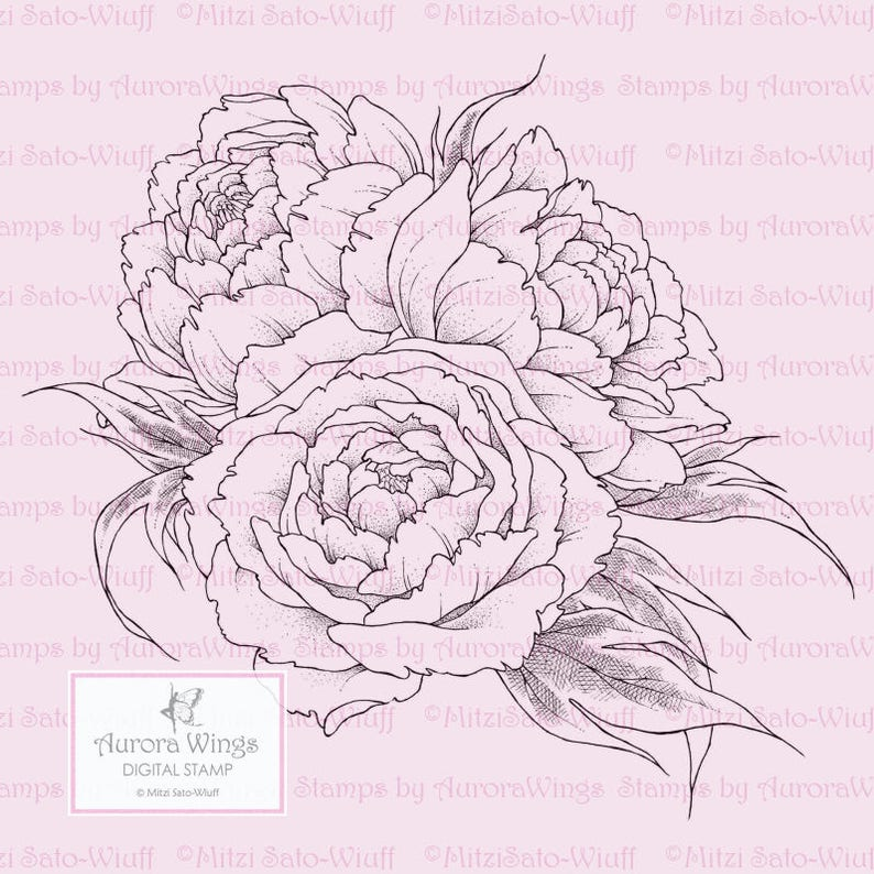 Instant Download digistamp Beautiful Floral Line Art Digi for Coloring by Mitzi Sato-Wiuff Peony Bouquet Peony PNG Digital Stamp