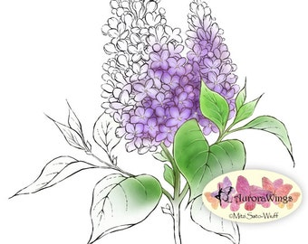 Digital Stamp Instant Download - Lilac 1 - digistamp - Lilac Stem with Two Clusters - Floral Line Art for Cards & Crafts by Mitzi Sato-Wiuff