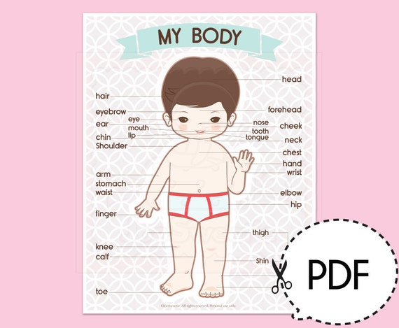 My Boy Body Learning Chartsprintable Pdf Download Etsy