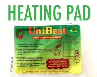 Succulent Heating Pad