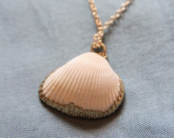 Shell necklace | Gold plated brass