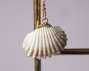 Shell necklace   Gold plated brass