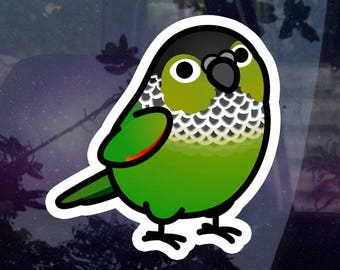 """Chubby Black-capped Conure 3.5"""" Sticker [Outdoor Quality]"""