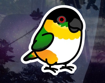 """Chubby Black Headed Caique 3.5"""" Sticker [Outdoor Quality]"""