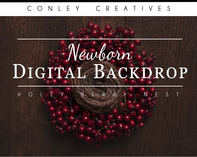 Newborn Digital Backdrop- Holly Berry Nest  composite digital background festive Christmas Newborn Compositing photoshop