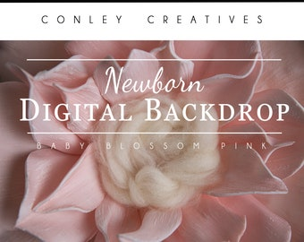 Newborn Digital Backdrop- Baby Blossom pink   Flower digital drop   Flower Springtime Background for Newborns