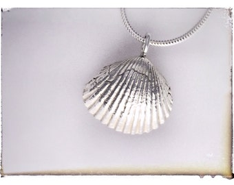 """A beautifully crafted silver shell and an 18"""" silver chain"""