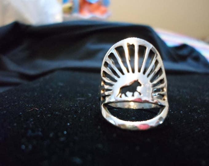 horse in sun burst rings quarter size