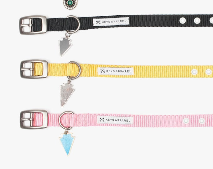 The Standard Plus Dog Collar - (More Styles)