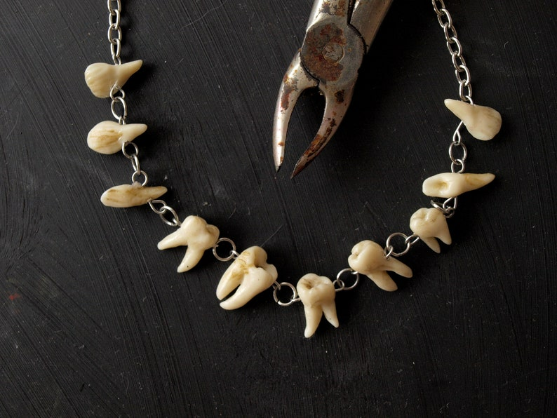 60d784199ed1 Human teeth necklace Goth jewelry Taxidermy art Tooth