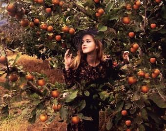 """Postcard photography art """"Garden of Eden"""""""