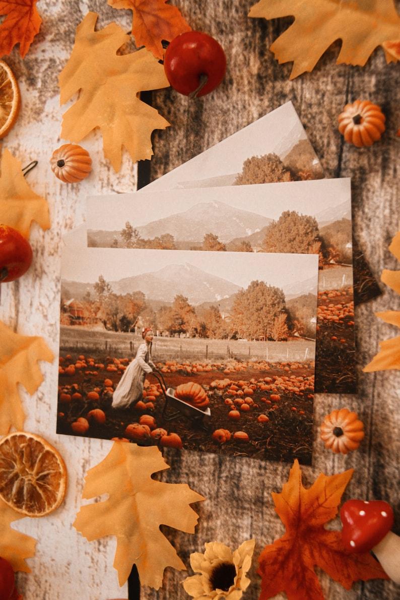 Autumn Halloween Fall autumn magic faerie fairy tale pumpkin patch Postcard art photography Preparing autumn Olga Valeska