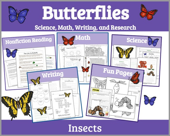 Butterfly Printable Life Cycle of a Butterfly Printable Life
