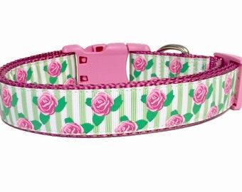 Gift - Dog Collar - Flower - Stripe - Rose - Beautiful - Pet - Wedding - Spring - Summer - Garden - Rose - Gift for her