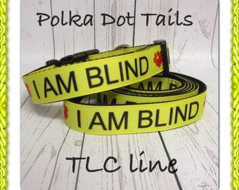 I AM BLIND Dog Collar & Leash Set