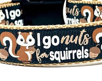 Squirrel Dog Collar, I go Nuts for Squirrels, Critter dog collar, Cute dog collar