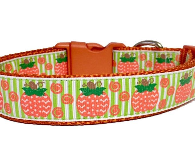 Featured listing image: Pumpkin Dog Collar - Fall - Green - Orange - Dog Collar Halloween Fall - Thanksgiving - Handmade - Pet Gift - Boutique - Dog Gift
