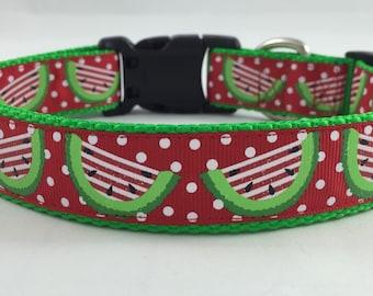 Summer watermelon, Red Spring Fun Dog Collar