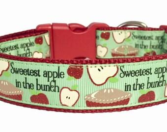 Sweetest Apple, Fall Dog Collar, Harvest Back to School, Thanksgiving, pet gift, handmade, Teacher, Apple Pie, Polka Dot Tails, Gift for Dog