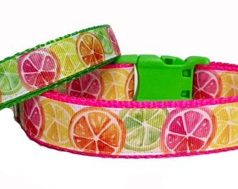 Citrus Fun - Dog Collar - Lemons - Limes - Neon - USA - Pet - Gift - Summer - Bbq - Holiday - Puppy - Handmade -