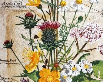 PLANTS TABLE RUNNER hand drawing, Lavender Ginkgo Sage Mistletoe Ivy Thyme St. John's wort Valerian Camomile Arnica Marigold