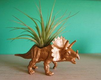 Gold Dinosaur Tillandsia Planter // Air Plant Dinosaur Pot // Triceratops