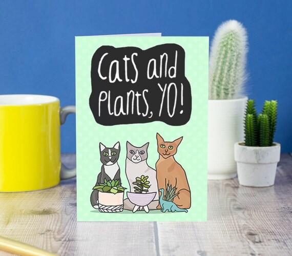 Cats And Plants Yo