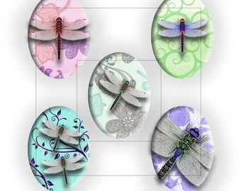 Dragonfly 13x18mm Oval Cabochon Digital Download Collage Sheet (11051)
