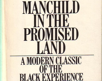 Manchild In The Promised Land Pdf