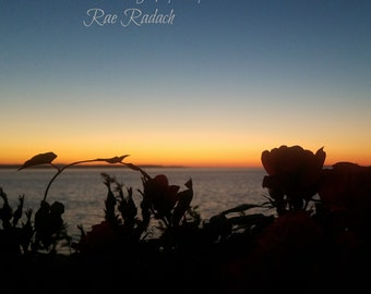 Roses with Sunset Photo canvas, metal , magnet, wood prints Pacific northwest nature ocean