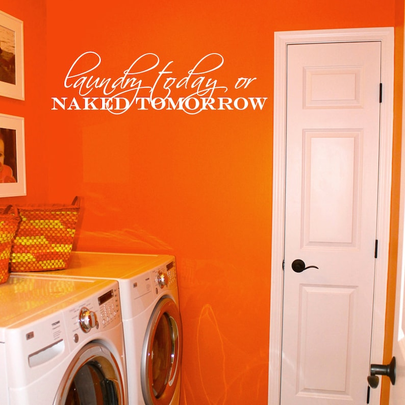 best selling Laundry Today or Naked Tomorrow Removable