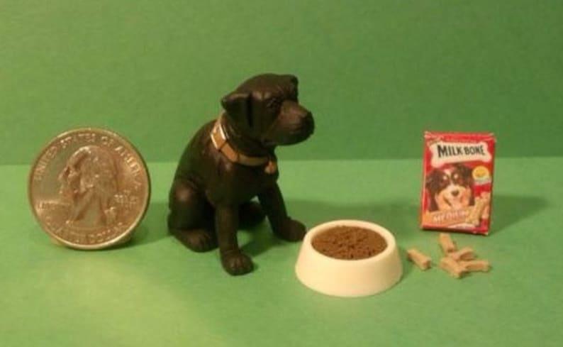 Terrific Dollhouse Miniature Black Lab Dog Food Set 1 12 One Inch Scale D50A K12 Dollys Gallery Beutiful Home Inspiration Truamahrainfo