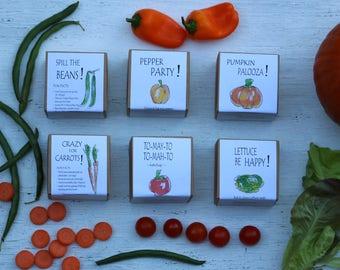 Farm Party Favors for kids, 6 kids garden kits for a garden themed birthday party, favors for kids,