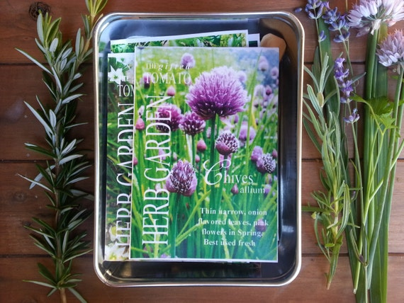 Herb Garden Kit 7 Packets Of Organic Herbs Gardening Gift | Etsy