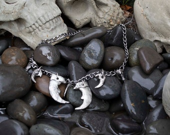 Coyote & Bear claw necklace