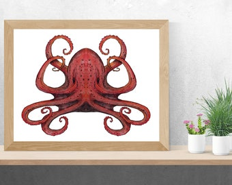 Red Octopus || A4 Art Print || Lanscape || Watercolours & Ink