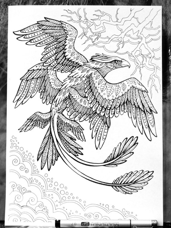 fantastic beasts coloring pages Frank the Thunderbird Fantastic Beasts Adult Coloring Page | Etsy fantastic beasts coloring pages